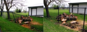 Pickens Fence Chainlink before and after