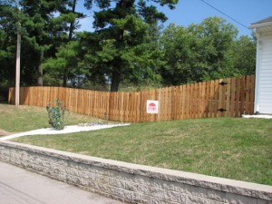 Privacy fence and gate